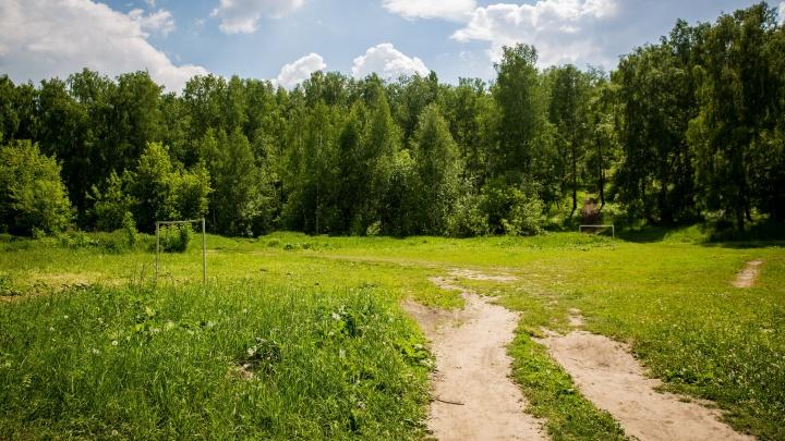 Землю дали, но не тем: прокуроры нашли нарушения с бесплатной раздачей участков под Новосибирском
