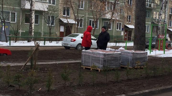 Во дворах домов на Красном проспекте начали укладывать плитку и сажать деревья. Зимой