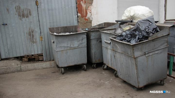 Региональный оператор готов заплатить за вывоз мусора из Омска почти шесть миллиардов