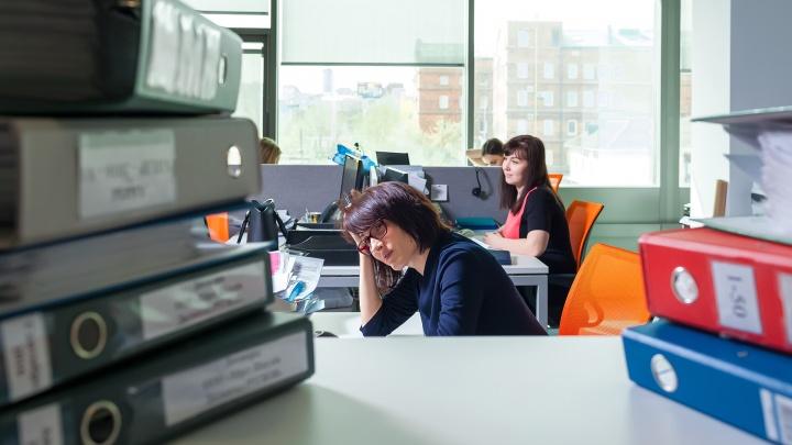87% опрошенных курганцев хотят сменить работу