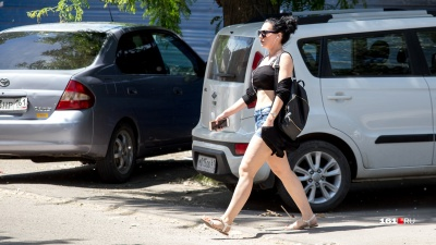 Всё жарче: в последнюю неделю мая ростовчан ждет не по-весеннему теплая погода