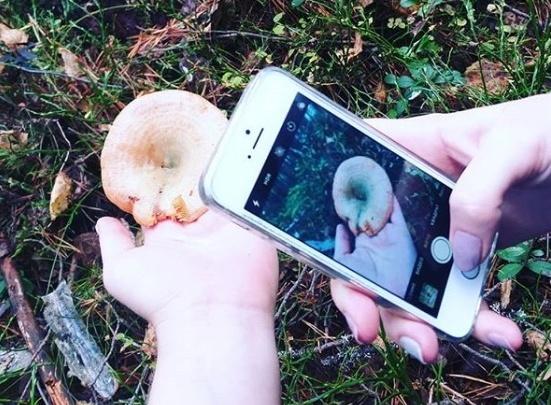 По грибы, по ягоды: 15 осенних «фотоприветов» из лесов Поморья