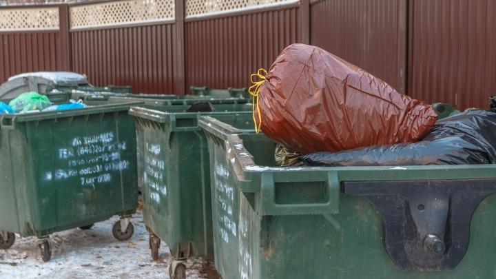 Регоператор попросил жителей Самары не выбрасывать мусор в кучи