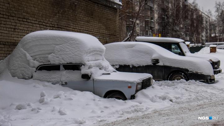 «Пережили снежное испытание»: мэр рассказал, как убирали Новосибирск от снега и мусора в праздники