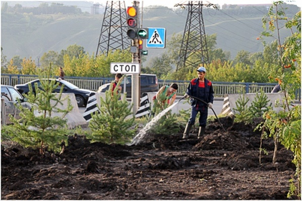 10 скверов хотят разбить в Красноярске в этом году