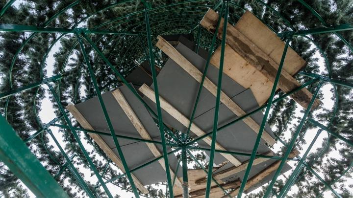 Простоит до конца недели: главную елку в центре Волгограда разберут после старого Нового года