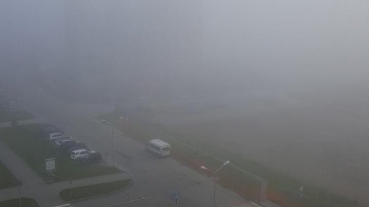 В аэропорту Толмачёво задержались пять рейсов из-за тумана