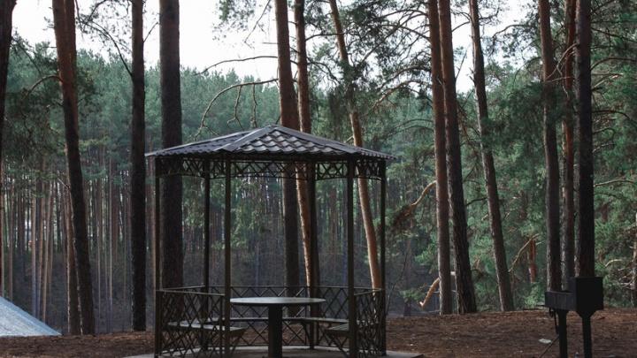 В Гилевской роще установят новые столы, скамейки, мангалы и урны