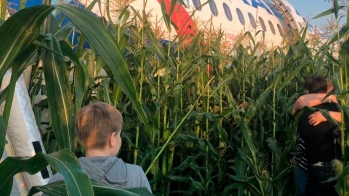 Межгосударственный комитет выдвинул основную версию о причинах посадки самолета в кукурузном поле