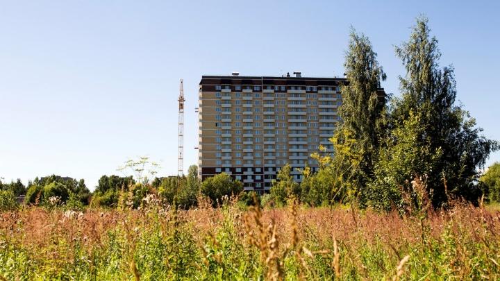 Стало известно, что давало право застройщику возводить высотки в Павловской роще