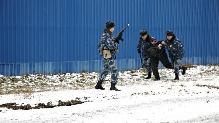 В Новодвинске задержали троих человек по подозрению в наркопреступлениях