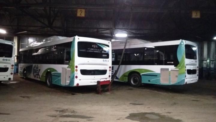 Стало известно, по каким маршрутам поедут новые большие автобусы