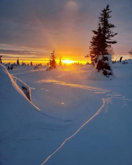 Ловил северное сияние и побывал на родине Санты: уральский фотограф доехал до Норвегии на машине