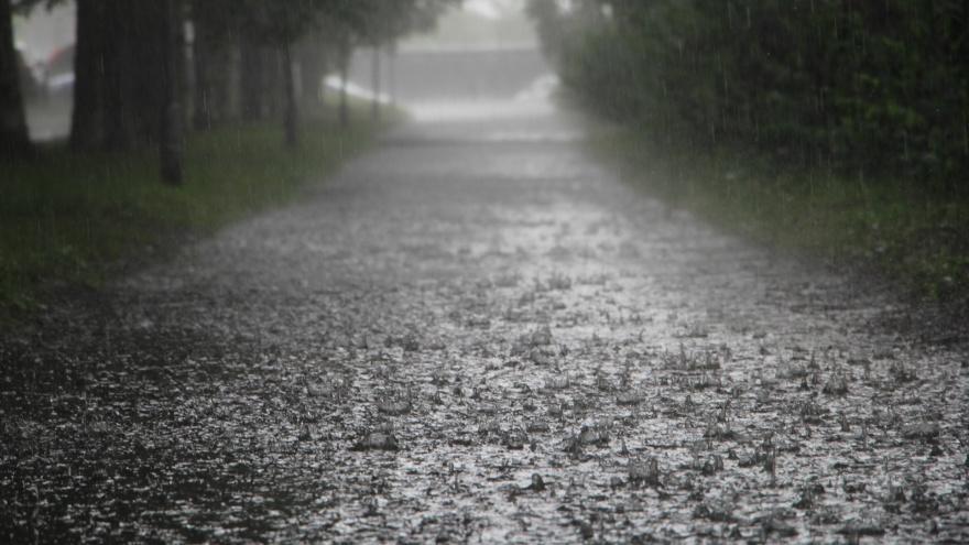 Грозы и сильные дожди: МЧС региона предупредило о шторме, который начнется в Поморье сегодня вечером