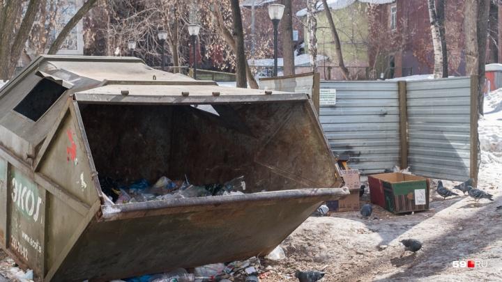 В Прикамье начнет работу оператор по сбору мусора. Кому надо заключать с ним договоры?