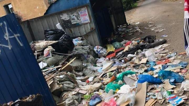 Ярославль утонул в мусоре. Что происходит во дворах, что говорят власти. Хроника
