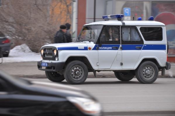 Полицейские задержали екатеринбуржца в одном из селКаменского городского округа