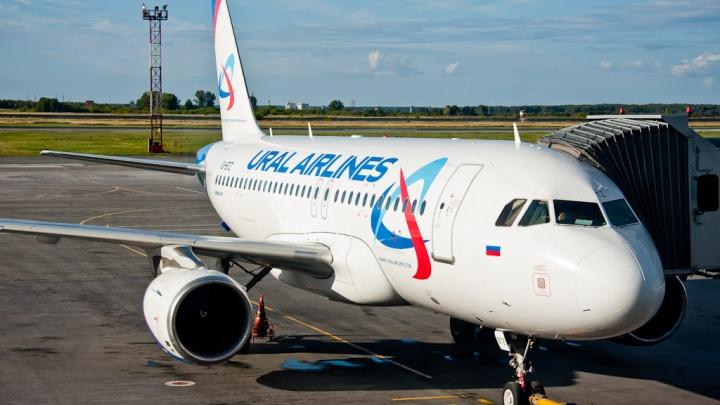 «Уральские авиалинии» отменили новосибирские рейсы после аварийной посадки в Подмосковье