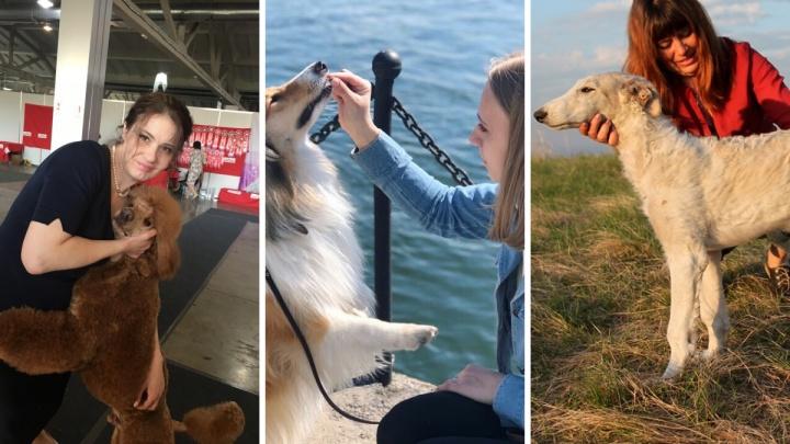 """«Люди на всю улицу кричат: """"Лесси!""""» Три истории о собаках, которые перестали быть модными"""