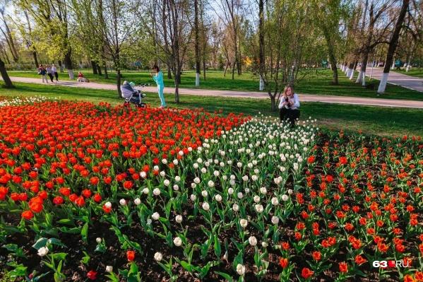 Наконец-то пришло время весенних фотосессий в цветущем городе