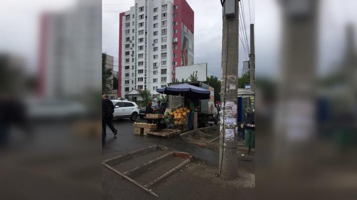 «Шум и вонь мешают жить»: самарцы пожаловались на стихийный рынок на Барбошиной поляне