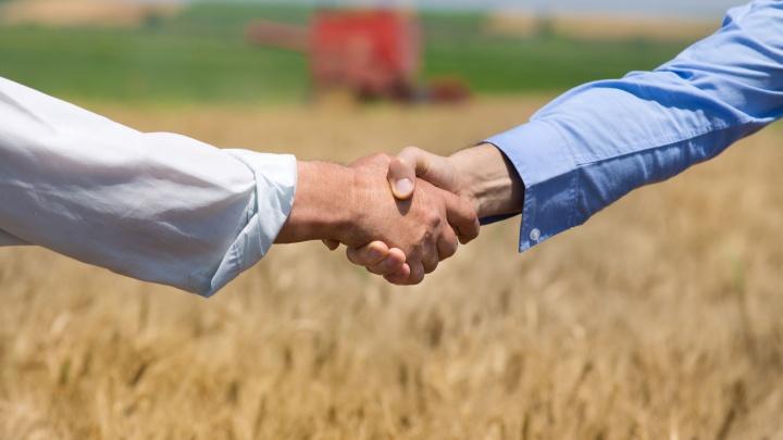 «Экспортёрам — без комиссий»: Россельхозбанк ввёл льготы для агропромышленных компаний
