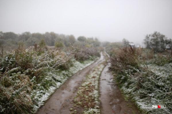 Первый снег в этом году в Ярославле выпал в сентябре