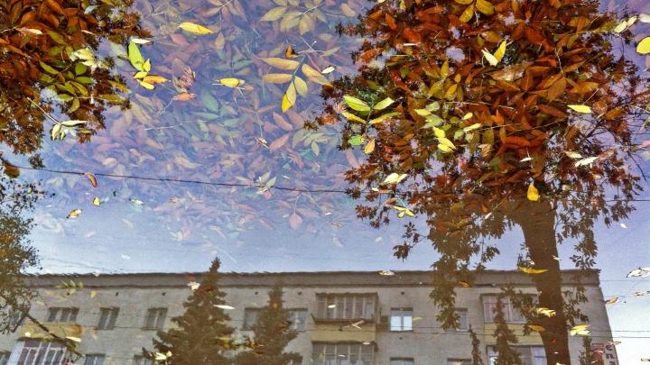 Дождливое настроение: синоптики рассказали о погоде в Башкирии на грядущую пятницу