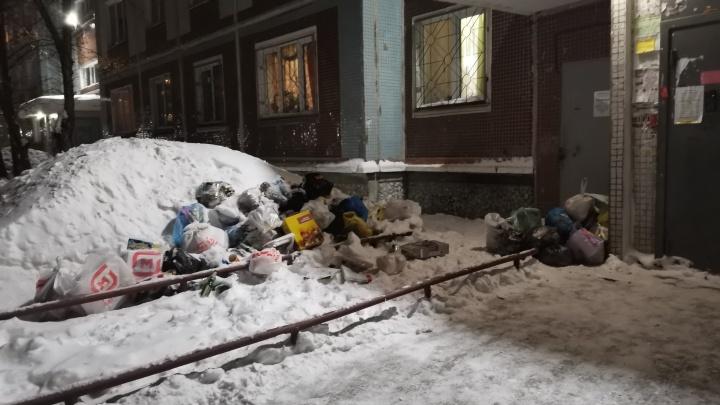 «Стоит жуткий запах»: новосибирцы не могут дождаться вывоза мусора пятый день