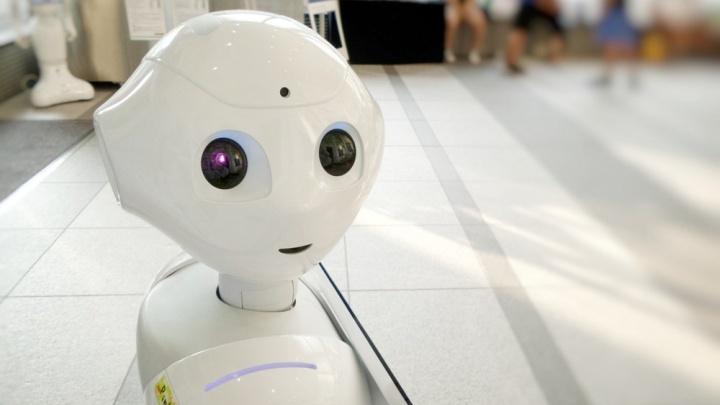 До чего техника дошла: как в челябинских дворах роботы чистят воду для питья