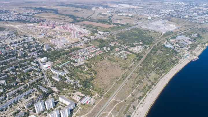 В Волгограде срубят3683 дерева и выселят людей ради полутора километров дороги на Электролесовской