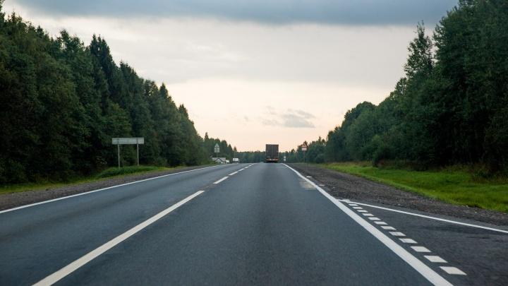 В Ярославской области 55 километров трассы оградят защитными сетками