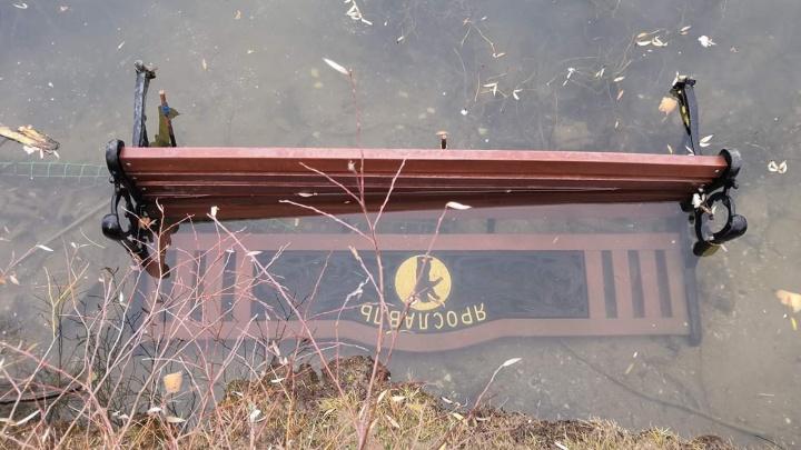 «Дикари из каменного века»: после погрома в парке ярославцы предложили не благоустраивать Брагино