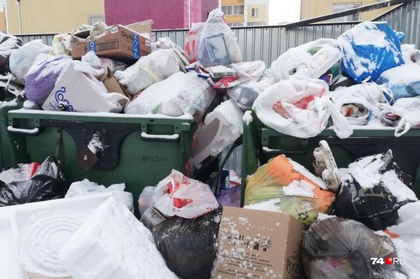 На Краснопольском проспекте, 25 мусор успело припорошить снегом