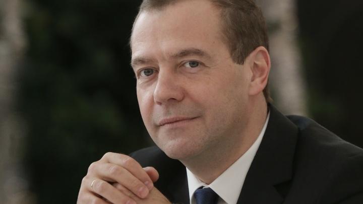 Медведев решил приватизировать в Самарской области племенной завод и набережную Волги