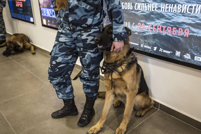 В самом кинотеатре очень много полиции с собаками и охранников