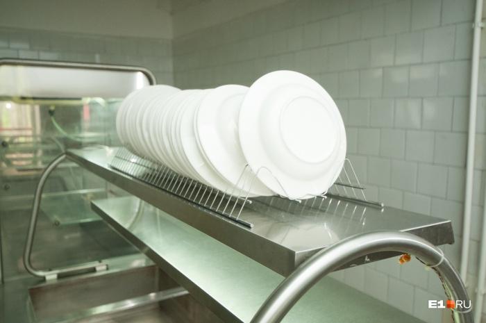 В заражении детей заподозрили мойщицу посуды