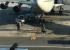 В Кольцово из-за угрозы взрыва проверили все самолеты, готовящиеся к вылету: как это было