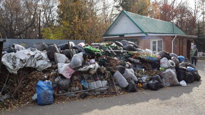 На кладбищах рядом с Чкаловским посёлком полгода не вывозят мусор: разбираемся, что происходит