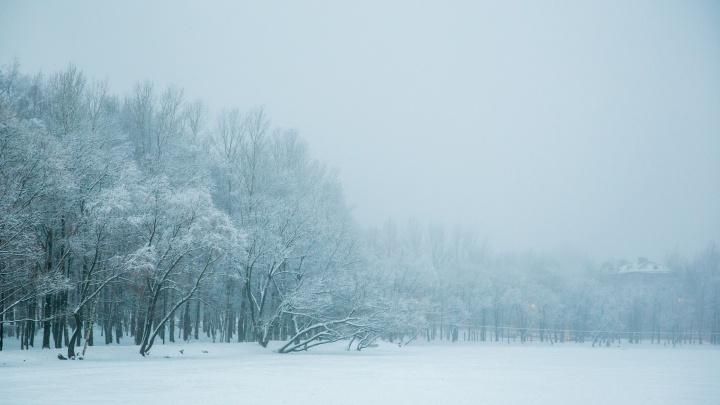 «Мороз окрепнет»: синоптики напугали ярославцев суровым арктическим холодом