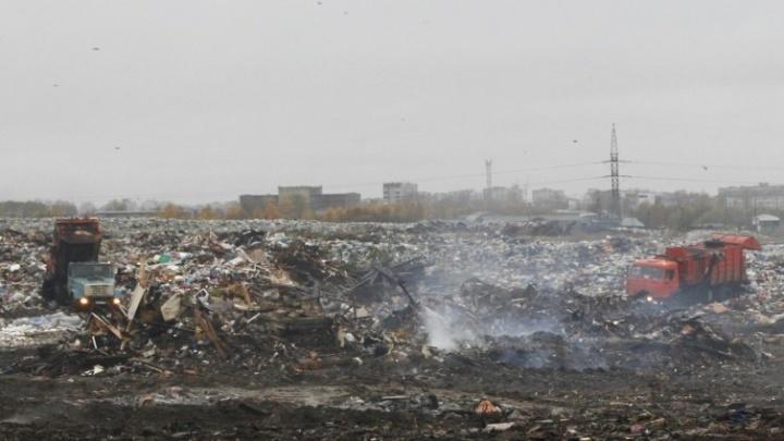 Тлеющую свалку в Северодвинске начали изолировать землей