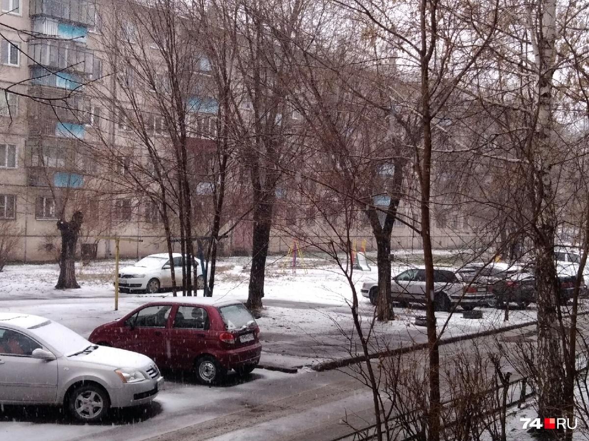 Снег выпал в южных районах области