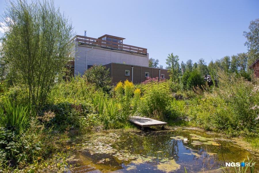 В саду есть даже свой пруд с цветущими кувшинками. По словам хозяев, здесь они всё учились делать с нуля — опыта проживания в своем доме у них не было, даже на даче.