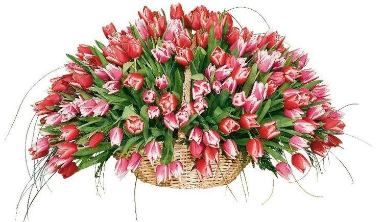 Для вас интернет магазин цветы