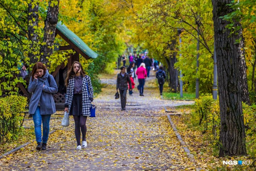 Жители ул. Романова имеют редкое преимущество — рядом располагается Центральный парк с театром музкомедии.