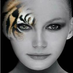 Красота по-тигриному