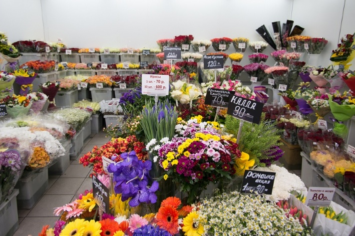 Купить цветы в запорожье недорого оптом
