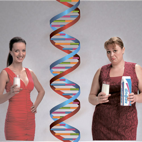 Генетический анализ диета