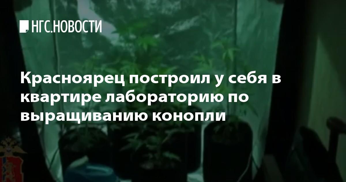 MDA Купить Ангарск Лсд legalrc Ленинск-Кузнецкий