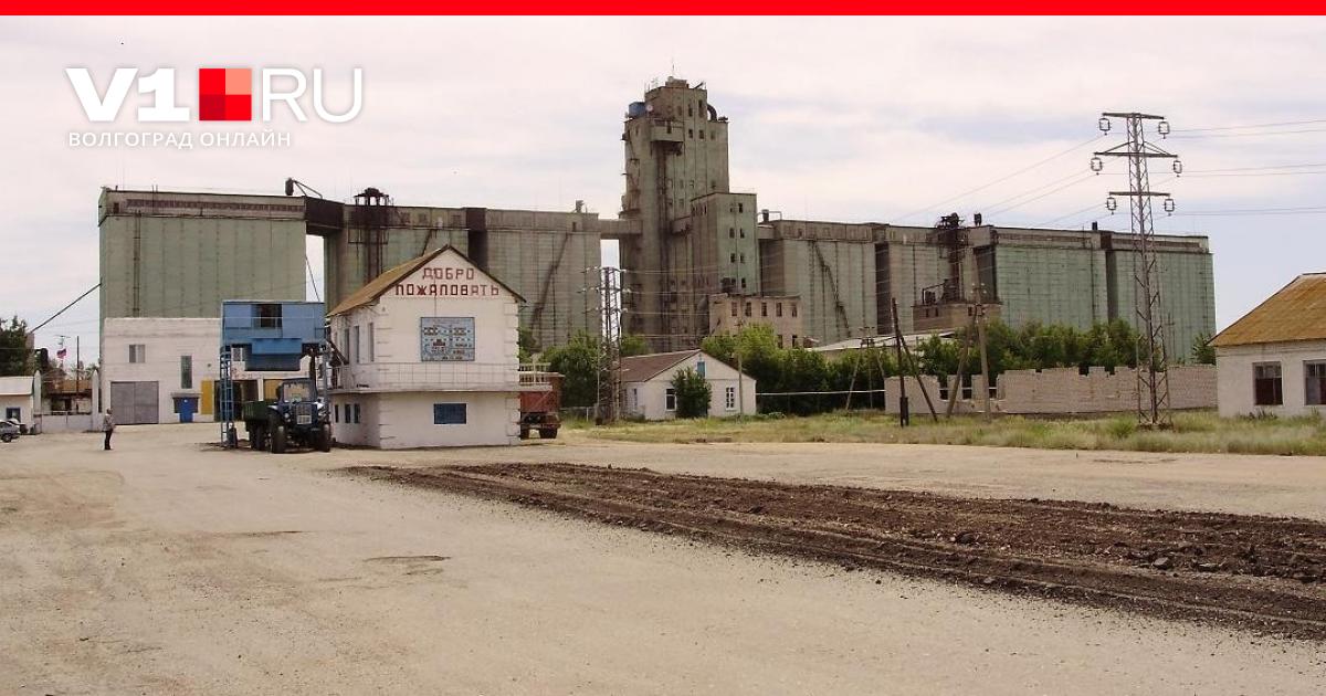 Сайт бердиевский элеватор транспортер для зерна своими руками